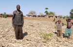 Conservation agriculture in Malawi - difficult choices about sustainability?