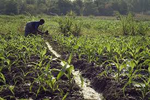 Common small scale irrigation technologies in Ethiopia