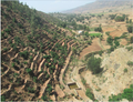 Hydrological impacts of water harvesting in Northern Ethiopia